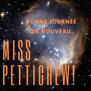Bonne journée, Miss Pettigrew !(2)